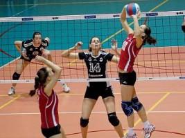 Les paris sur le volley-ball